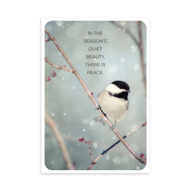 Chickadee on Branch Holiday Card