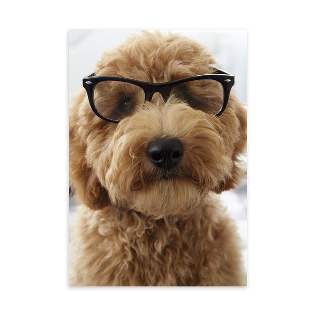 Dog in Glasses Customer Appreciation Card