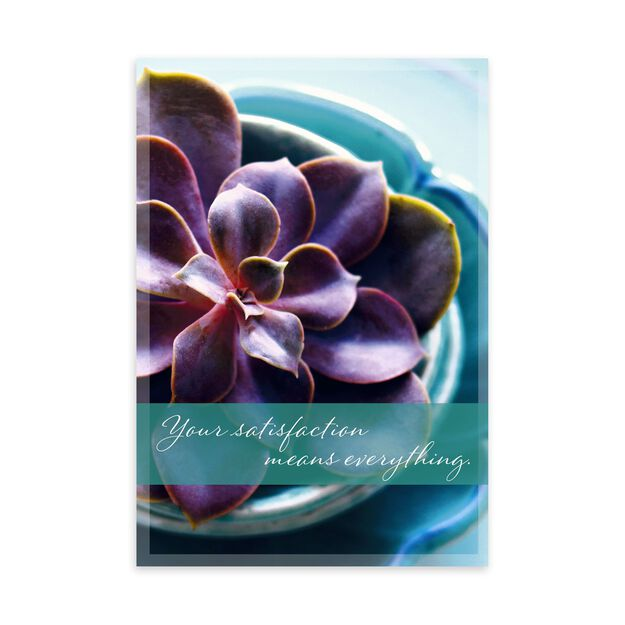 Peaceful Succulent Apology Card