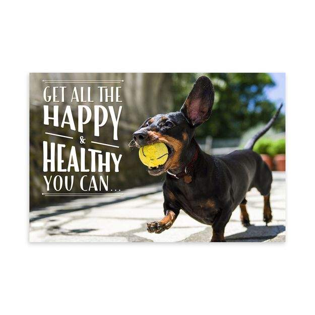 Playful Pup, Healthy Living Feel Good Card