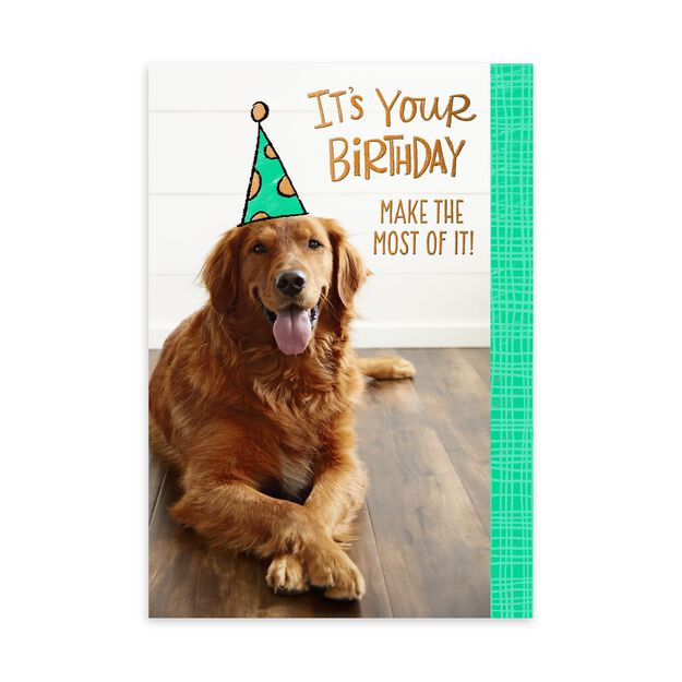 Yellow Dog in Party Hat Birthday Card