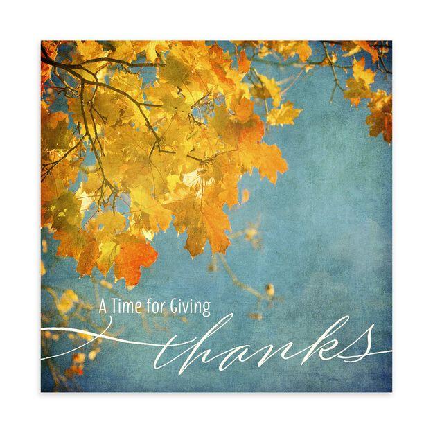 Vibrant Fall Leaves Thanksgiving Card
